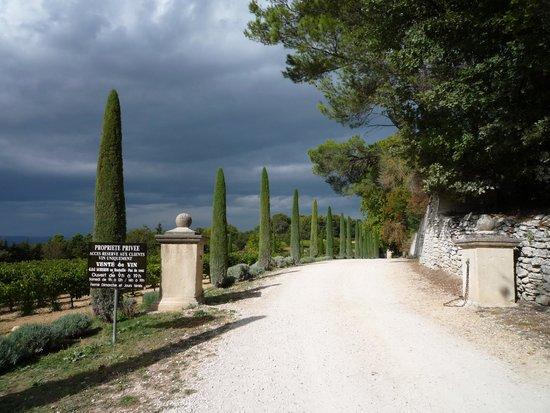 Les Terrasses du Luberon : Chateau la canogue