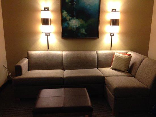 HYATT House Dallas/Las Colinas: couch