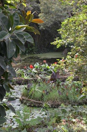 Exotic Gardens of Rabat Sale : Jardin exotique