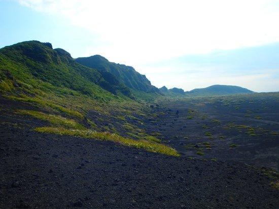 Mt. Mihara : 溶岩の大地です