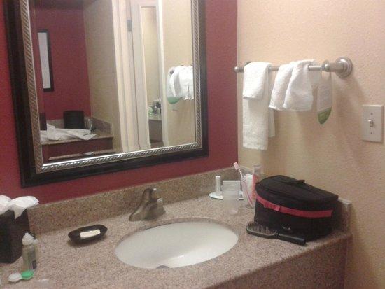 Courtyard Jacksonville Mayo Clinic/Beaches : le lavabo