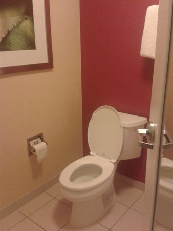 Courtyard Jacksonville Mayo Clinic/Beaches: les toilettes sont séparés
