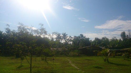 Mangrove Villa: 緑の多い敷地