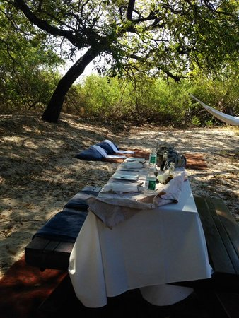 Royal Chundu Luxury Zambezi Lodges: Our private lunch after canoeing to a secluded island.