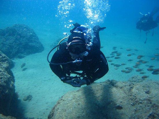 Atlantis Diving Lanzarote: Diving