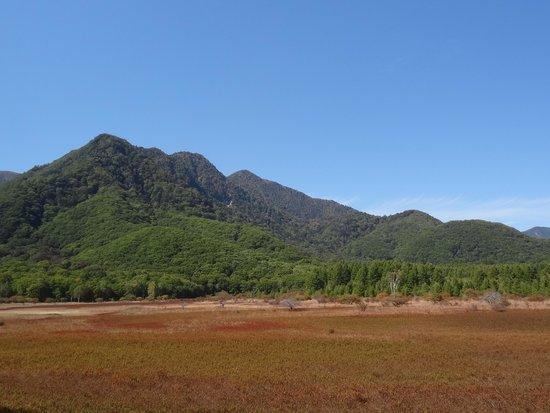 Odashirogahara Field: 絶妙に混ざり合う色