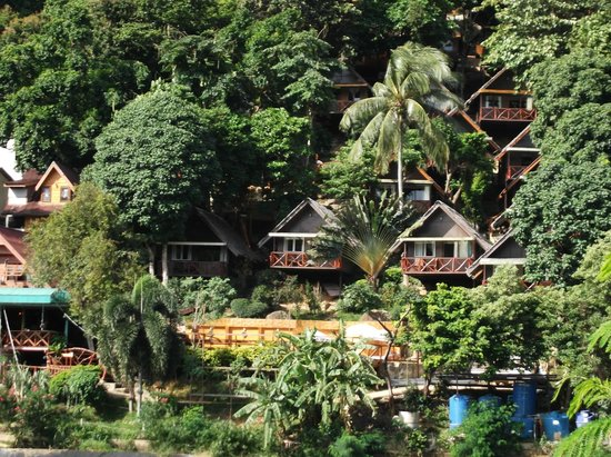 PP Ingphu Viewpoint: Bungalows high into the trees