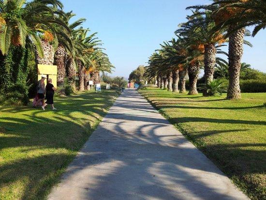 Caravia Beach Hotel: Der Weg zum Strand