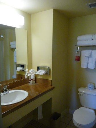 Ramada Anchorage: La salle de bain