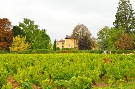 Chateau de la Flechere: chateau from the vineyard