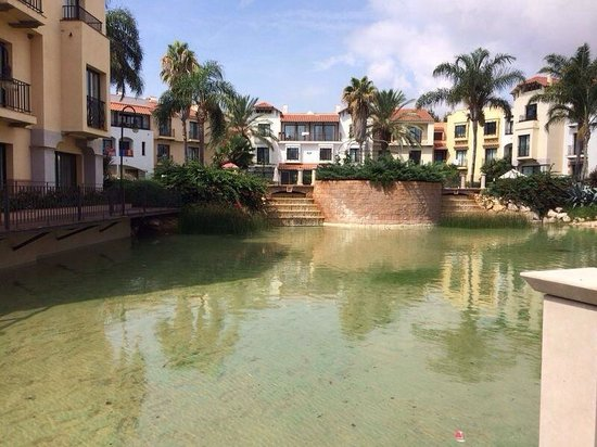 Hotel port aventura picture of portaventura hotel portaventura salou tripadvisor - Port aventura accommodation ...