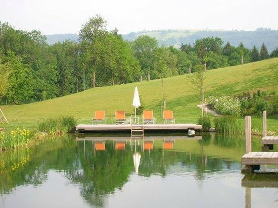 RelaxResort Kothmuehle : the pond and the deck
