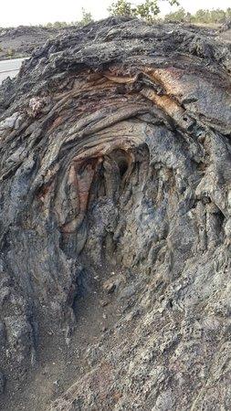 Kilauea Volcano: O encontro da lava com uma grande árvore.