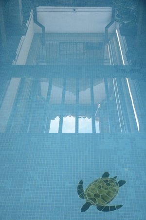 La Gran Francia Hotel y Restaurante: Reflection in pool