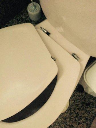 Hotel Europeo Benidorm: Broken toilet