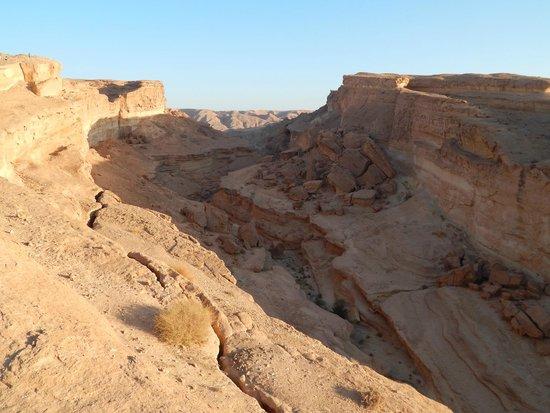 Sahara Desert: canyon of Sidi Bouhlel (I think)