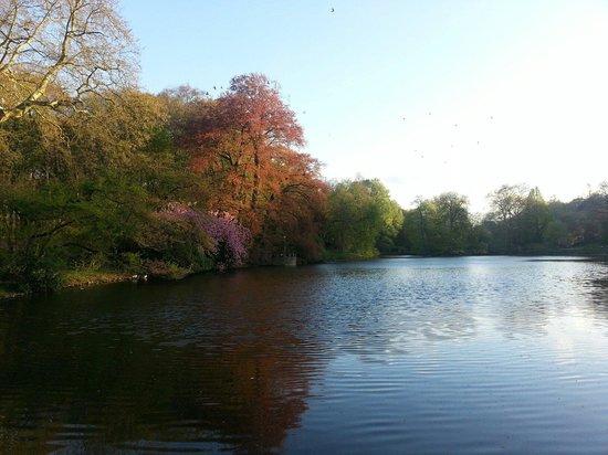 Botanischer Garten Rombergpark: Erholung pur