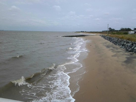 Woodland Beach