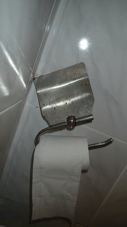 Tenggol Island Beach Resort : Standard Chalet Room number 16 toilet. Tissue holder needs to be changed. It is rusted.