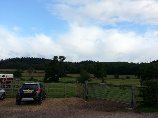 Mill Farm: Great views like this all round.
