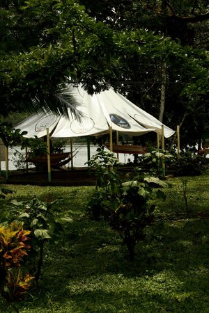 Hotel Ilan-Ilan Trails & Lodge: Areas Verdes 06