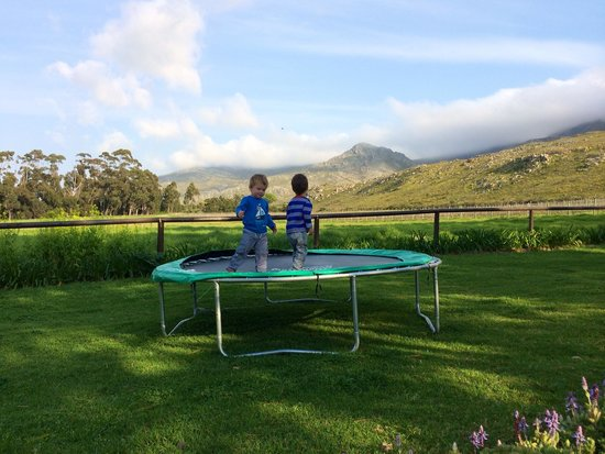 Blue Gum Country Estate: Tranquil & beautiful