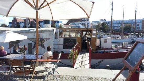 Hornfischbar auf der Pomeria