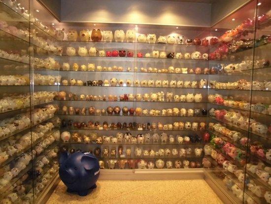 Schweine-Museum: Prateleiras com centenas de porcos...