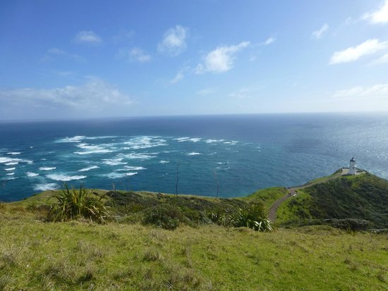 Harrisons Cape Runner: Cape Reinga - View from the hill