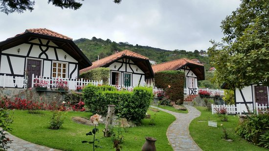 Cabanas Hessen: Jardin