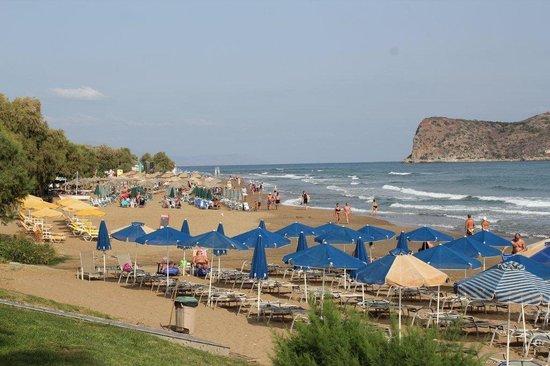 Alexandra Beach Resort: Stranden utanför