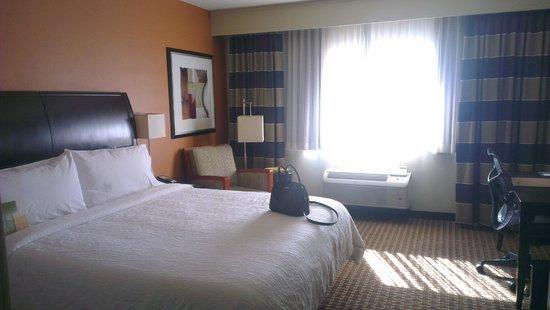 Hilton Garden Inn Denver Cherry Creek: Room