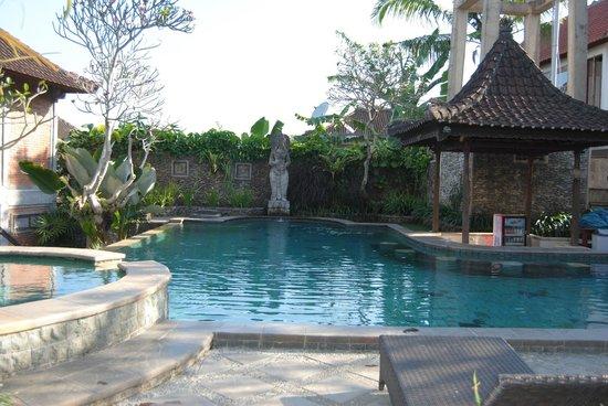 Ubud Bungalow : Piscina