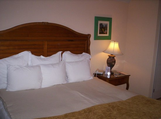 Marriott's Royal Palms : Great Beds