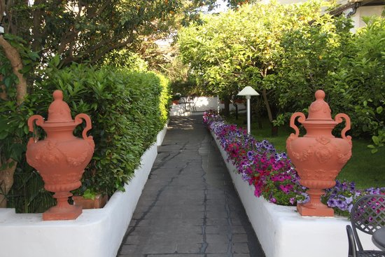 Hotel 'A Pazziella: Em frente à porta da recepção