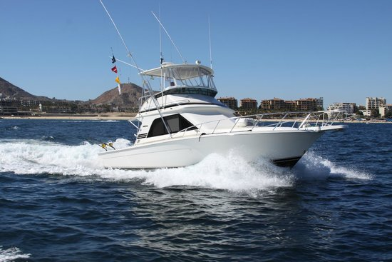 Colleen 39 s magic sportfishing cabo san lucas lo que se for Magic sport fishing