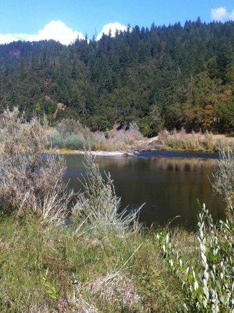 Morrison's Rogue River Lodge: fantastic Rogue River frontage
