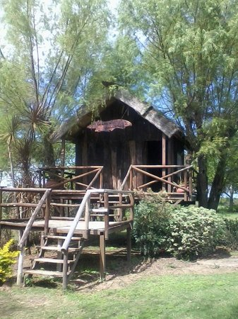 complejo cabanas cayasta casita del arbol