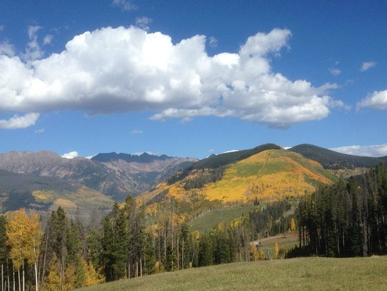 Vail Mountain Resort: View from near Eagle's Nest, Vail 9-24-14