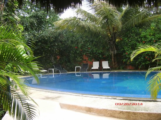Don Diego de la Selva: Pool area