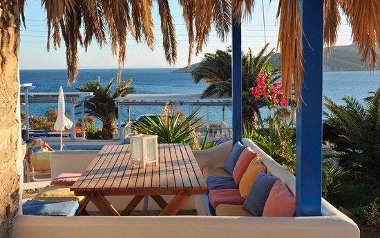 Dolphin St. Georgio Villas & Suites
