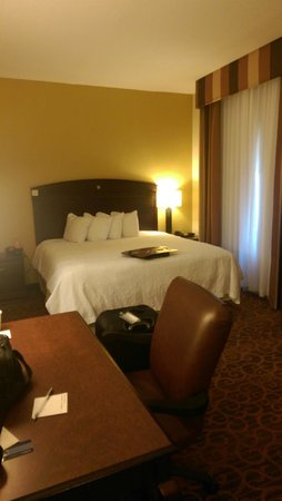 Hampton Inn & Suites Jacksonville-Airport: King Studio Suite