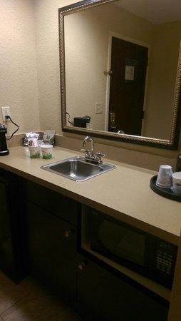 Hampton Inn & Suites Jacksonville-Airport: King Studio Bathroom