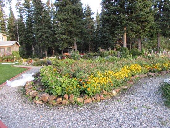 Garden Bed & Breakfast: Gardens and pathways