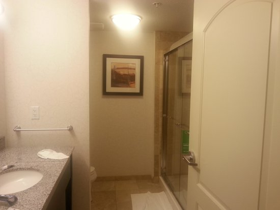 Hampton Inn & Suites by Hilton Red Deer : Spacious bathroom