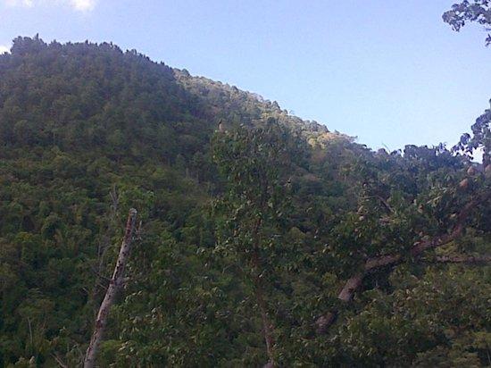 Mount St. Benedict Monastery: mountain view lol