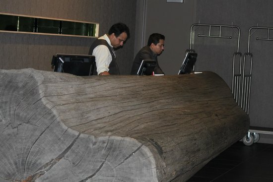 Hotel Paradox, Autograph Collection: They like big logs too...  Their staff were really nice and quite helpful during our stay!