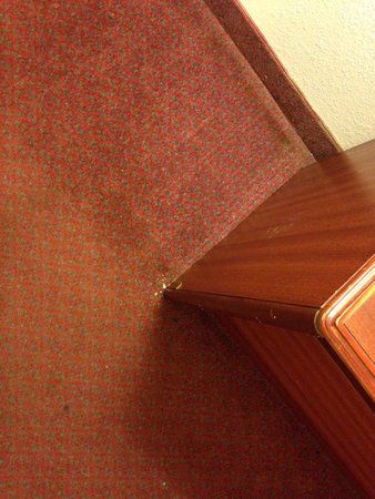 Motel 6 Rocky Mount: Dirt on the floor