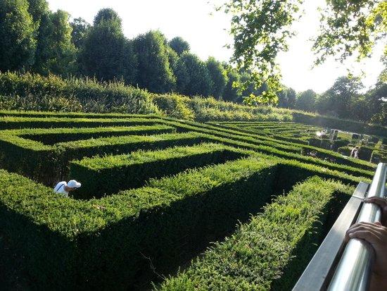 Maze & Labyrinth Schonbrunn