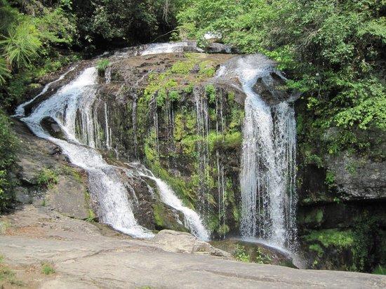 Laural Fork Falls
